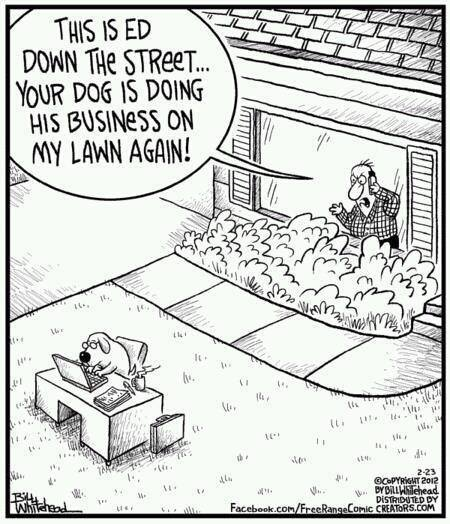 doggy business