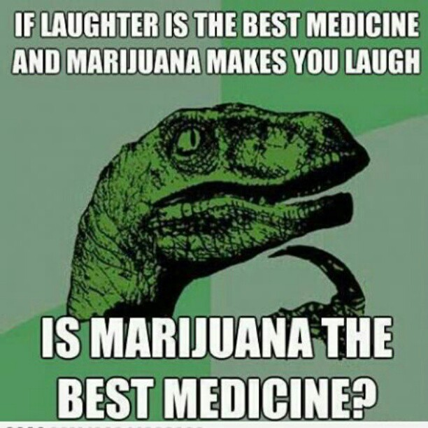 marijuana conclusion In conclusion, i came to know about this topic from friends, media, and the public marijuana shouldn't be seen as something that is evil or harmful, but rather.