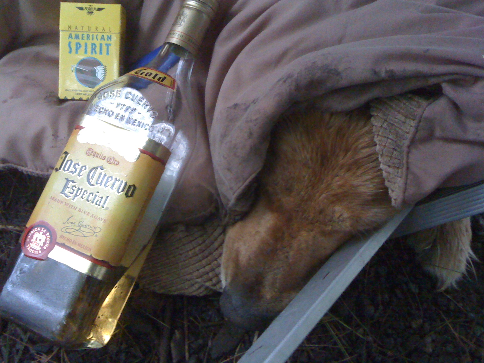 Camping in the rain, tired and miserable, and too much tequila and cigarettes
